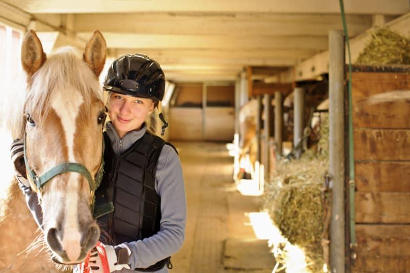 Ökopur Desinfektion Horse Trensen und Geschirre