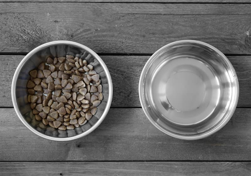 Ökopur animal - pets Wasser- und Futternäpfe